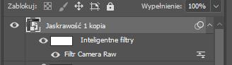 camera raw 1.png